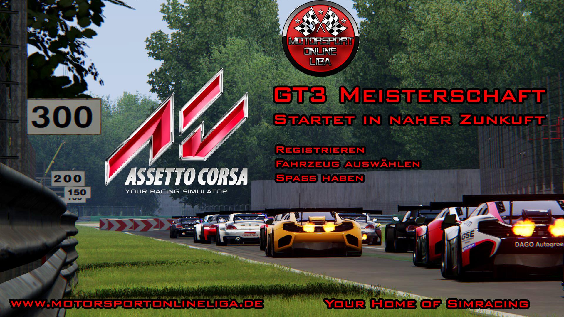 Flyer Assetto Corsa.jpg